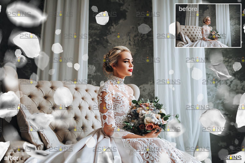 Flower overlay & Photoshop overlay: Floral digital backdrop, Flower overlay, Falling white petal png - 002 67 -