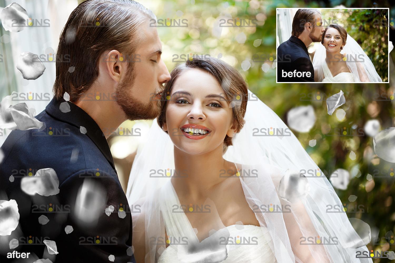 Flower overlay & Photoshop overlay: Floral digital backdrop, Flower overlay, Falling white petal png - 005 63 -