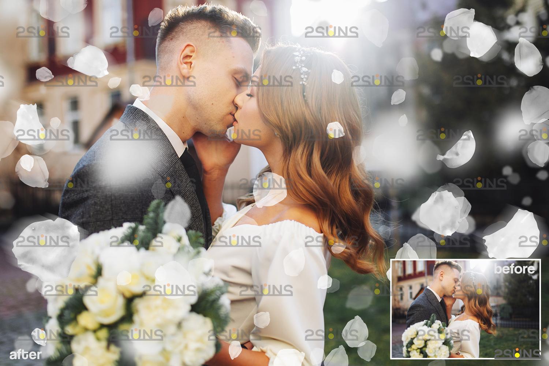 Flower overlay & Photoshop overlay: Floral digital backdrop, Flower overlay, Falling white petal png - 008 57 -