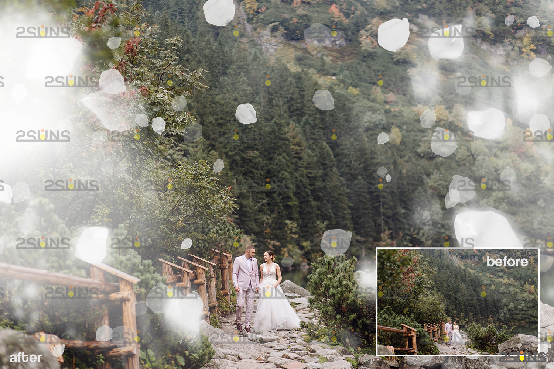 Flower overlay & Photoshop overlay: Floral digital backdrop, Flower overlay, Falling white petal png - 009 50 -