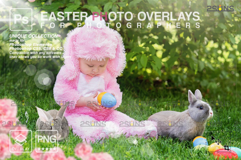 Digital Easter photoshop overlay & Easter bunny overlay: Easter overlay, Baby chicks overlay, Easter - 001 95 -