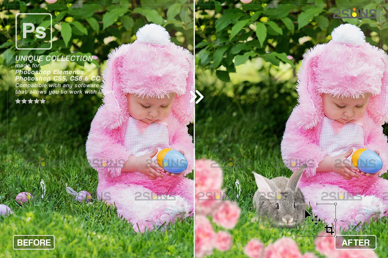 Digital Easter photoshop overlay & Easter bunny overlay: Easter overlay, Baby chicks overlay, Easter - 002 97 -