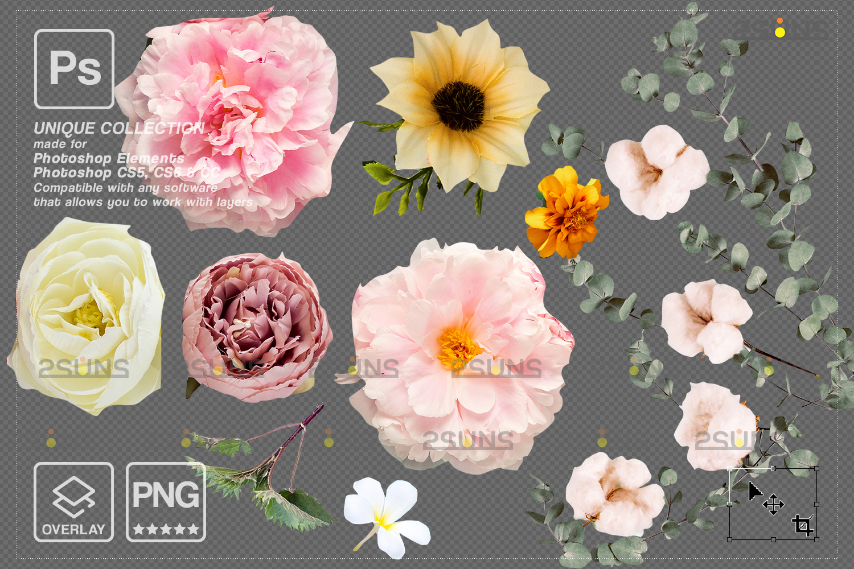 Digital Easter photoshop overlay & Easter bunny overlay: Easter overlay, Baby chicks overlay, Easter - 003 101 -