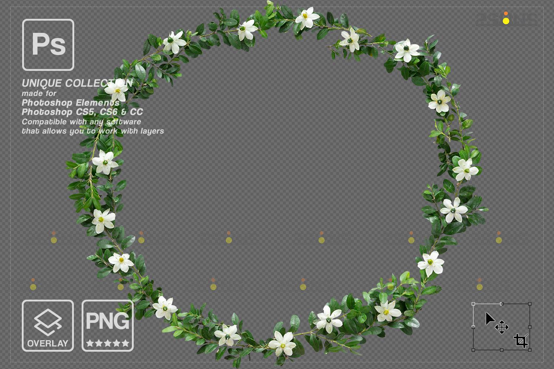 Digital Easter photoshop overlay & Easter bunny overlay: Easter overlay, Baby chicks overlay, Easter - 006 88 -