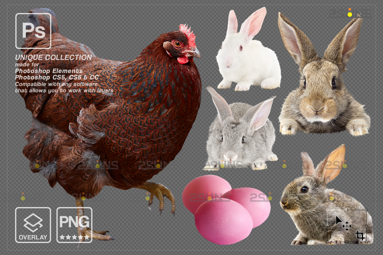 Digital Easter photoshop overlay & Easter bunny overlay: Easter overlay, Baby chicks overlay, Easter - 008 84 -