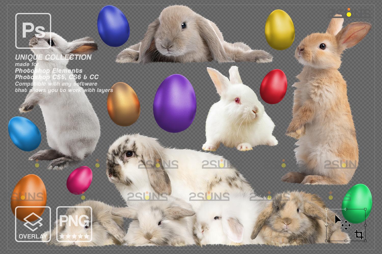 Digital Easter photoshop overlay & Easter bunny overlay: Easter overlay, Baby chicks overlay, Easter - 009 76 -