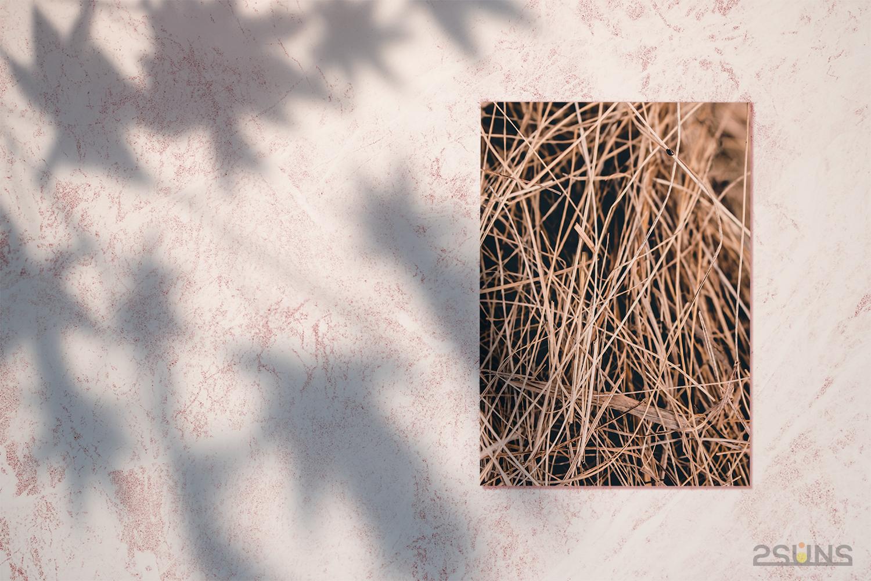 30 Floral backdrop & Fern overlay, Forest background, Flower overlay, Grass backdrop, Digital - 2 37 -