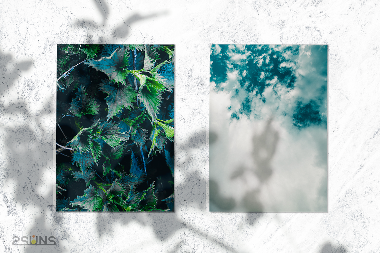 30 Floral backdrop & Fern overlay, Forest background, Flower overlay, Grass backdrop, Digital - 3 24 -