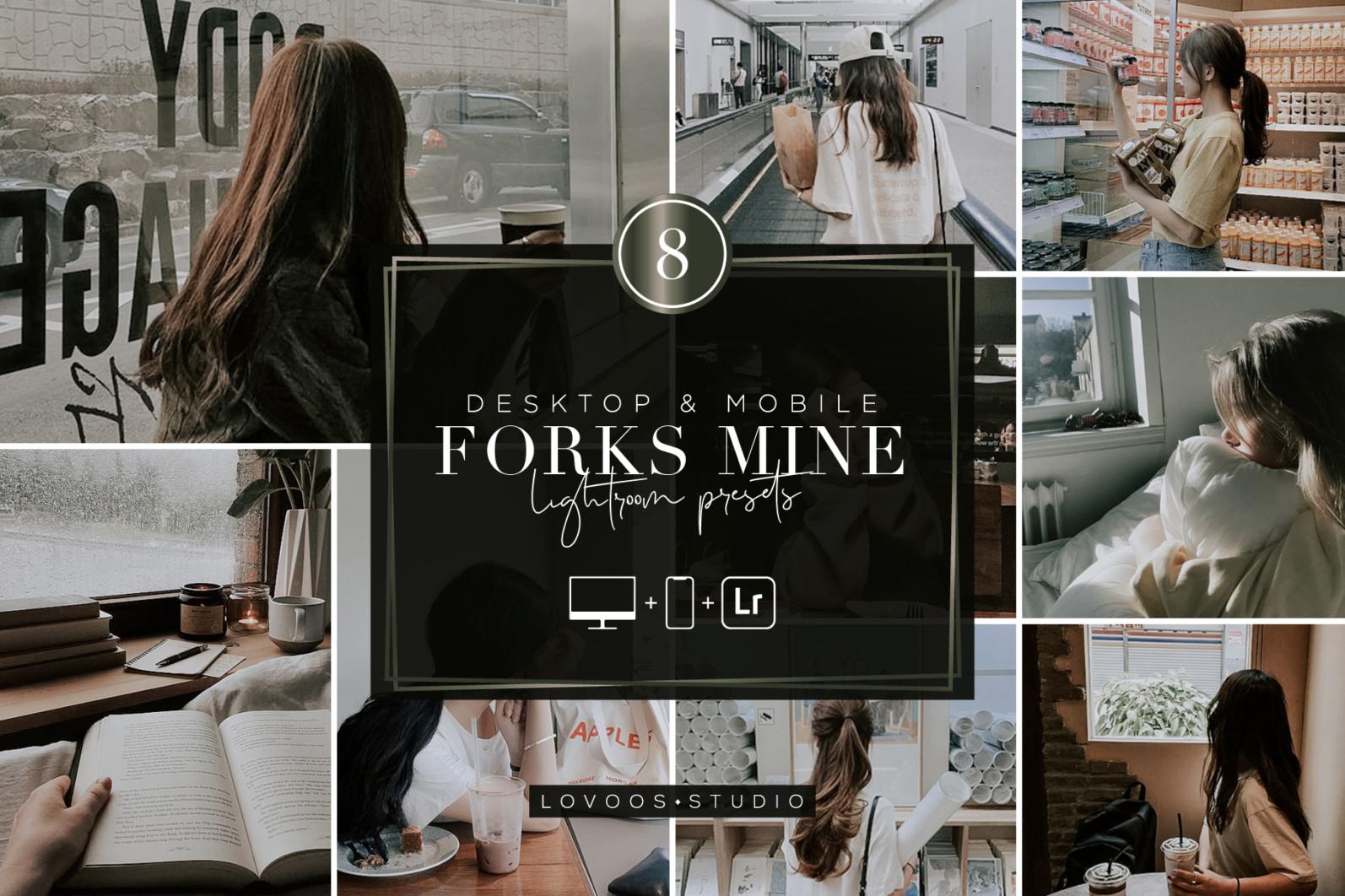 FORKS MINE - Lightroom Presets - COV 04 -