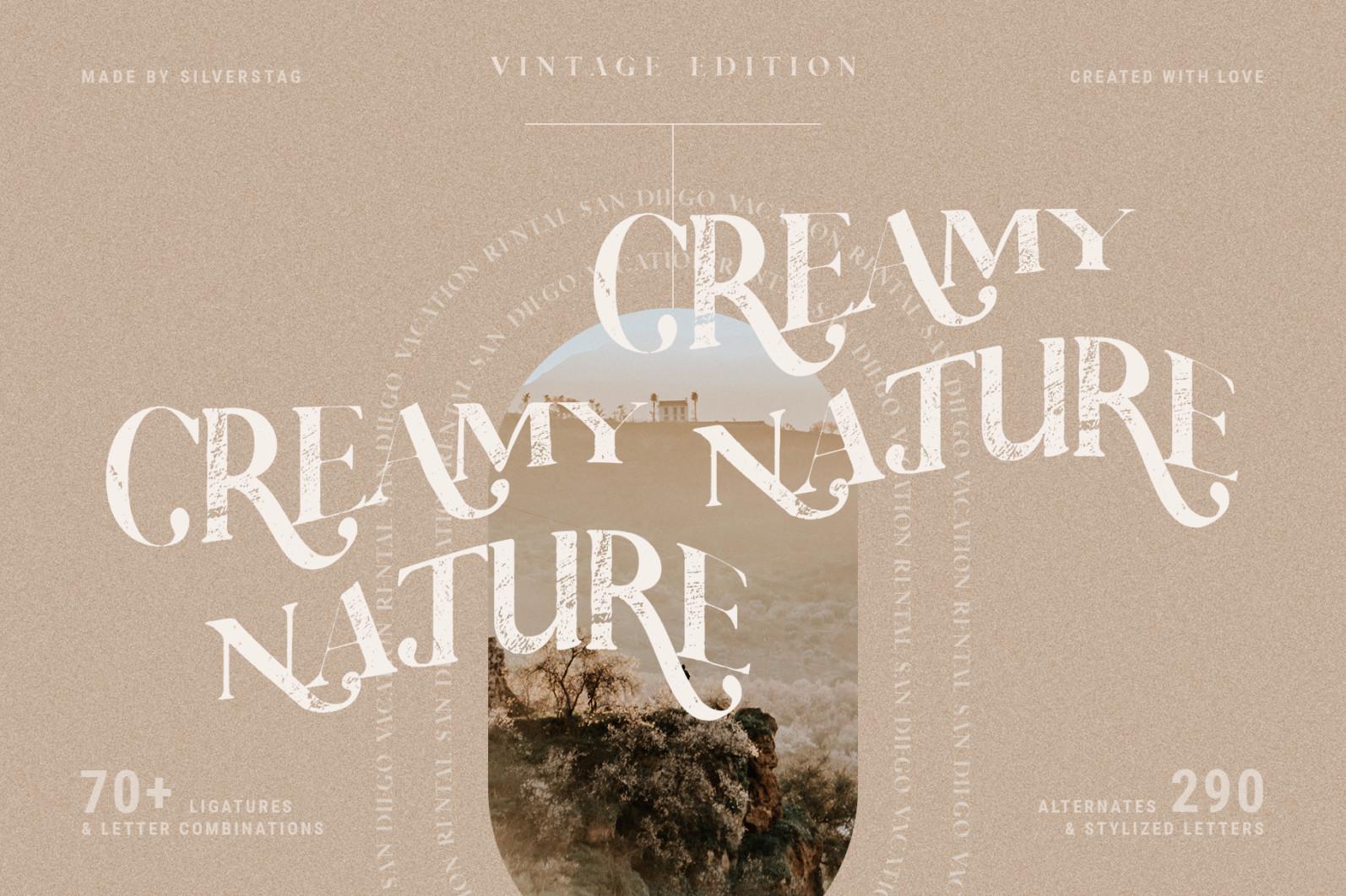 Vicky Christina - Vintage Serif Font - 14 vicky christina vintage ligature serif by silver stag -
