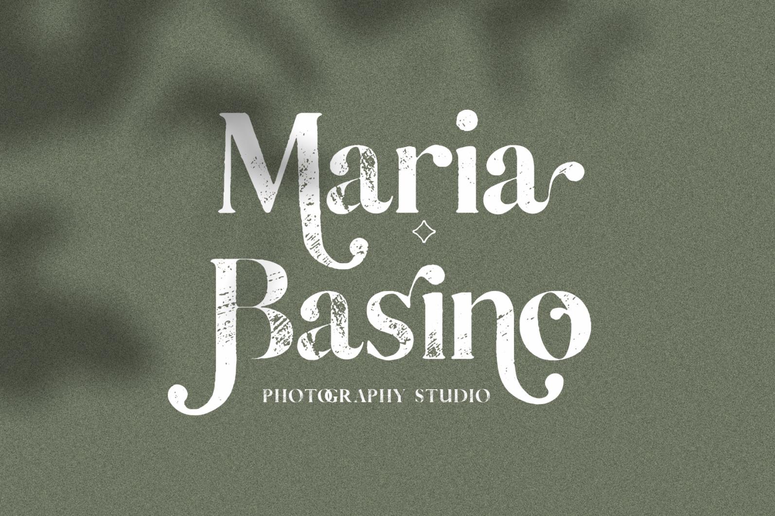 Vicky Christina - Vintage Serif Font - 15 vicky christina vintage ligature serif by silver stag -
