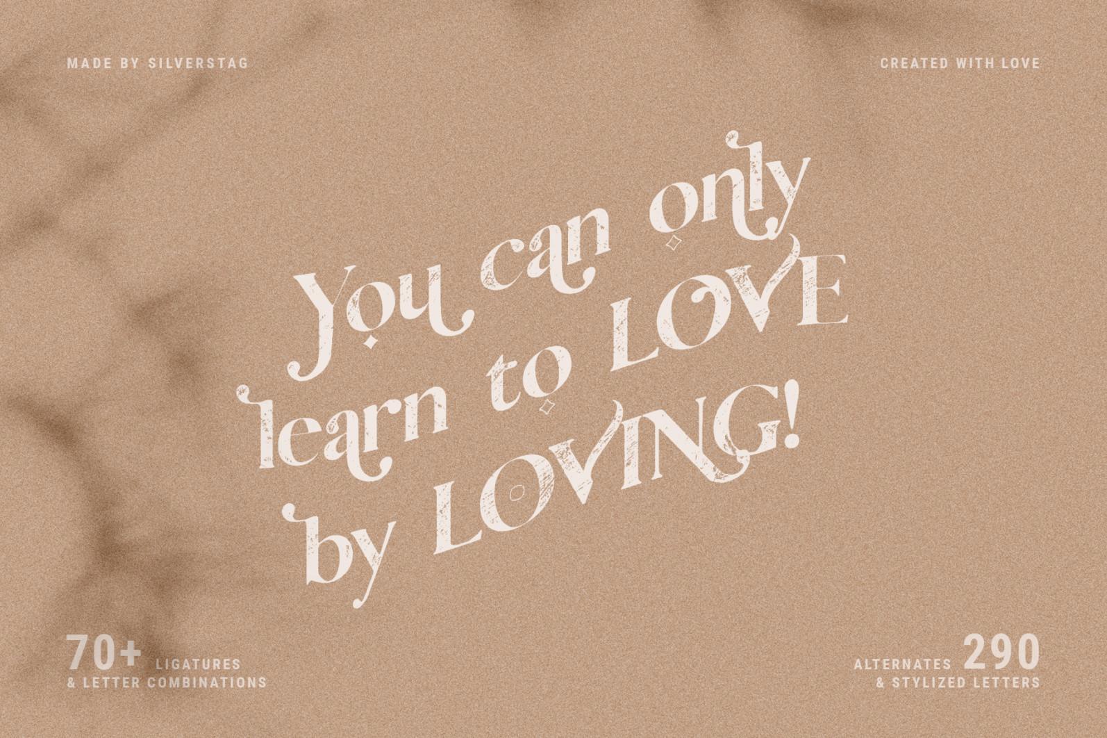 Vicky Christina - Vintage Serif Font - 17 vicky christina vintage ligature serif by silver stag -