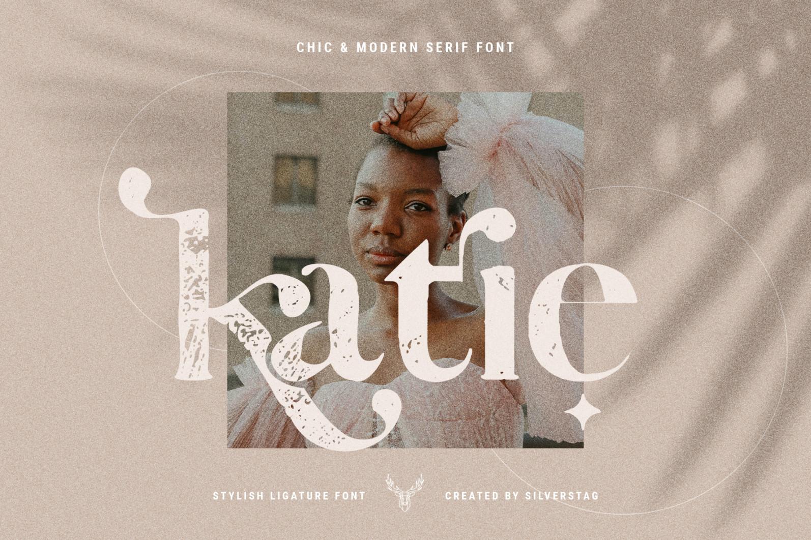 Vicky Christina - Vintage Serif Font - 18 vicky christina vintage ligature serif by silver stag -