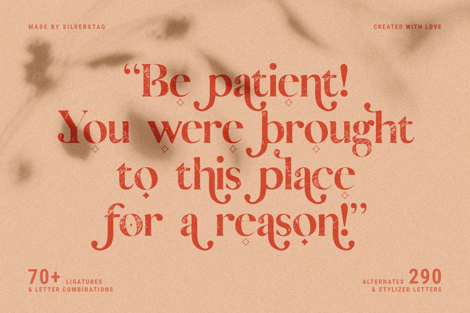 Vicky Christina - Vintage Serif Font - 20 vicky christina vintage ligature serif by silver stag -