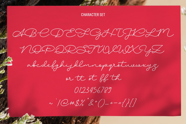 Hockleys Script Font - Hockleys Preview8 -