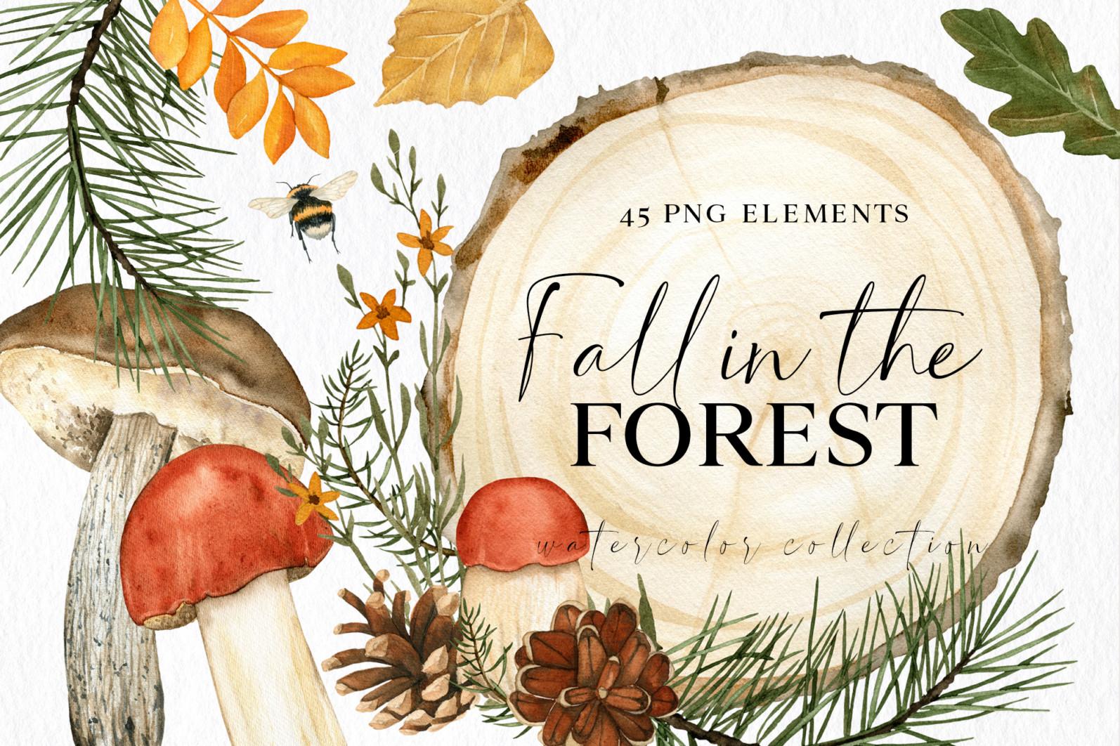 Fall forest mushrooms clipart, autumn clip art - 00 CM 1 -