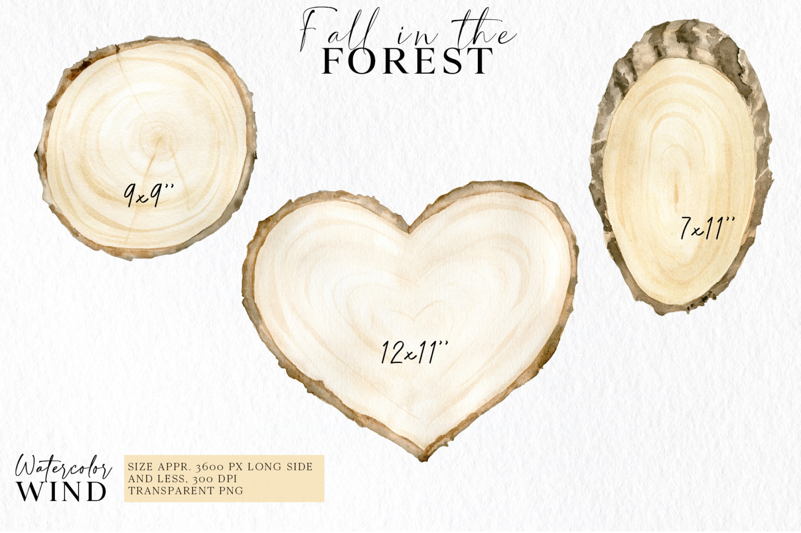 Fall forest mushrooms clipart, autumn clip art - 02 11 -