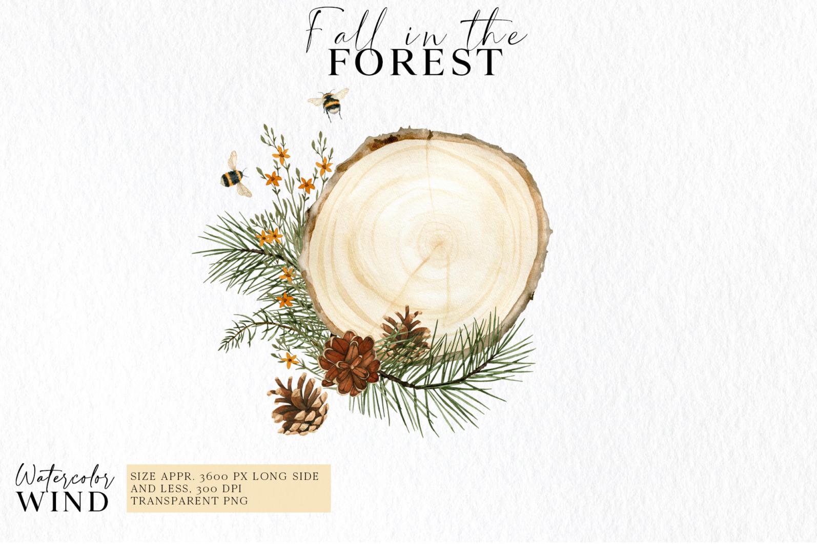 Fall forest mushrooms clipart, autumn clip art - 02 compos -