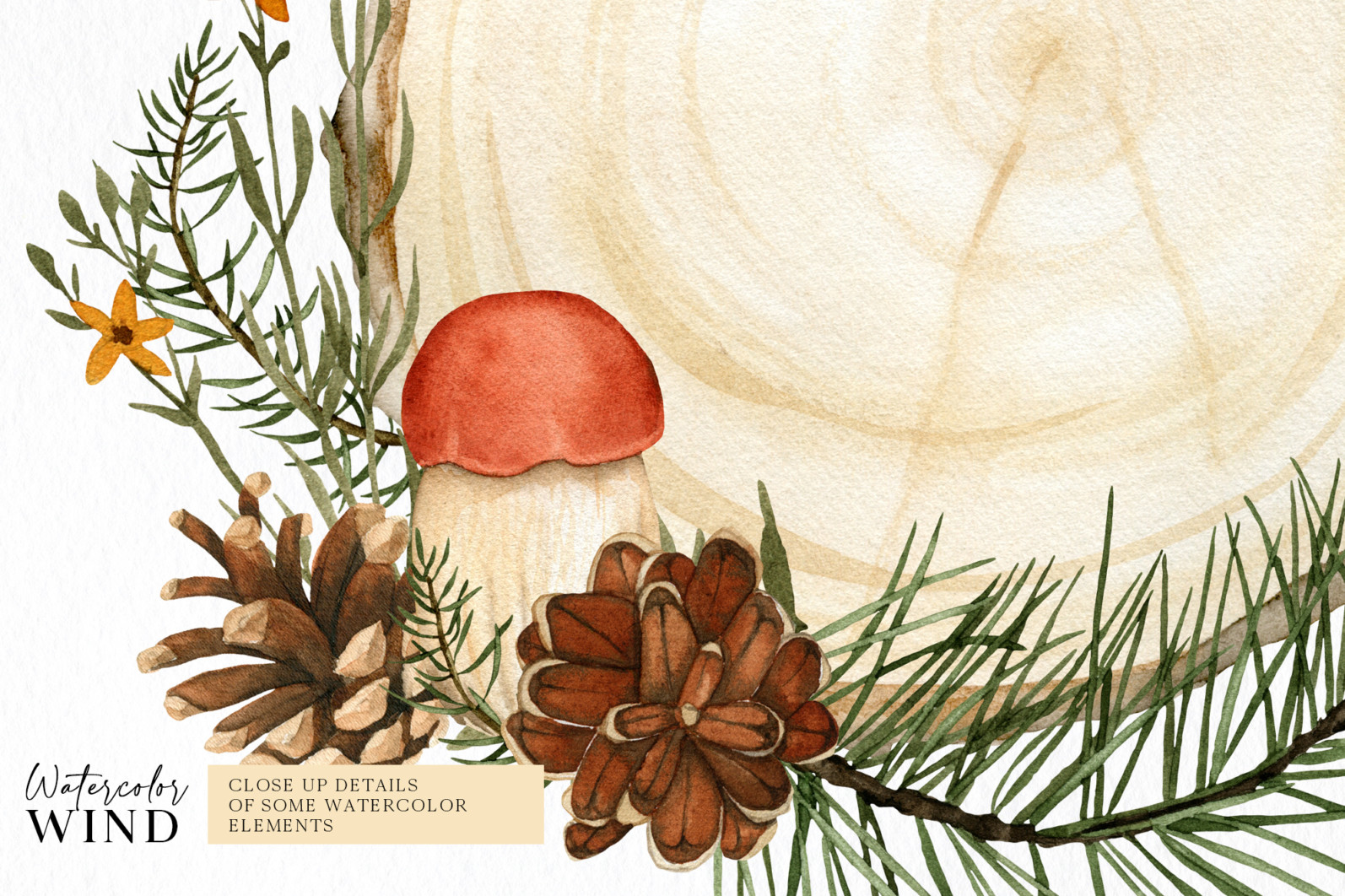 Fall forest mushrooms clipart, autumn clip art - 04 9 -