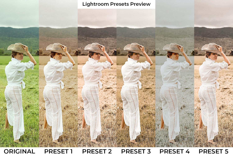 Brown Lightroom Presets - Brown GD pp 1 -