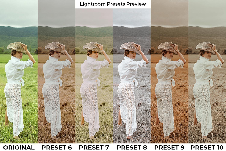 Brown Lightroom Presets - Brown GD PP 2 -