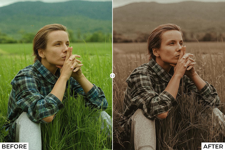 Brown Lightroom Presets - Comparison 2 2 -