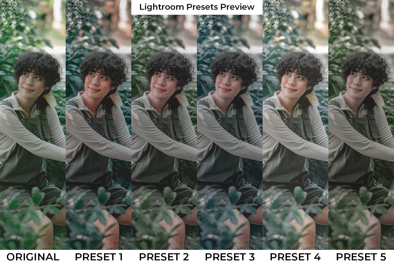 Ethnic Lightroom Presets - Ethnic PP -