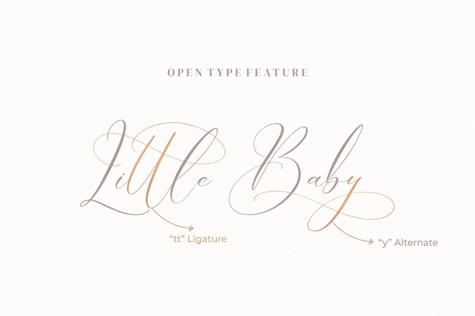 Boutique Qiara - Calligraphy Font - 6 255 scaled -