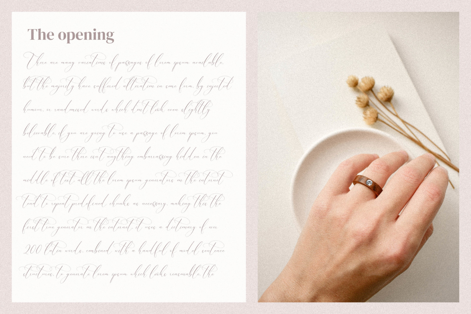 Boutique Qiara - Calligraphy Font - 7 242 scaled -