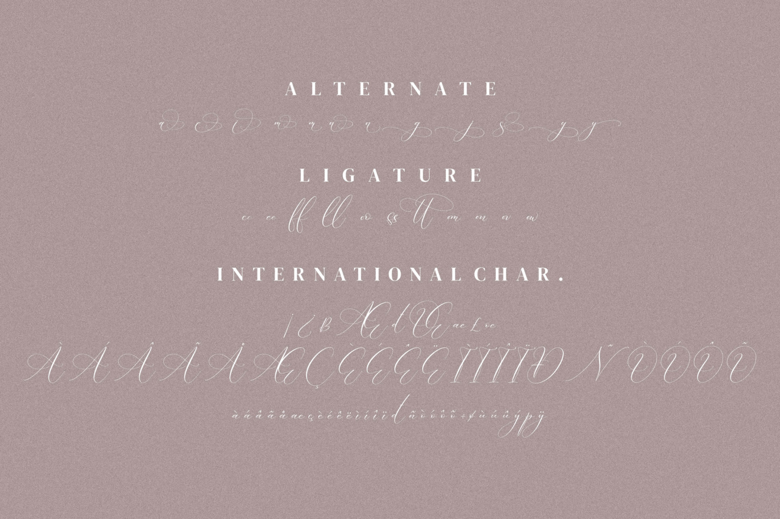 Boutique Qiara - Calligraphy Font - 12.png 2 scaled -