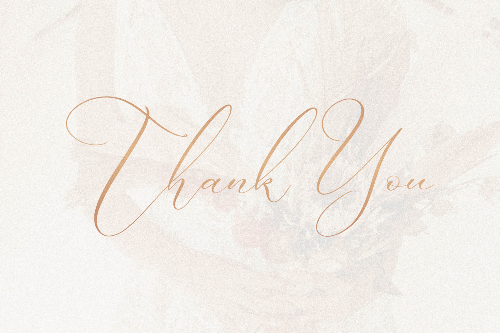 Boutique Qiara - Calligraphy Font - 13.png scaled -