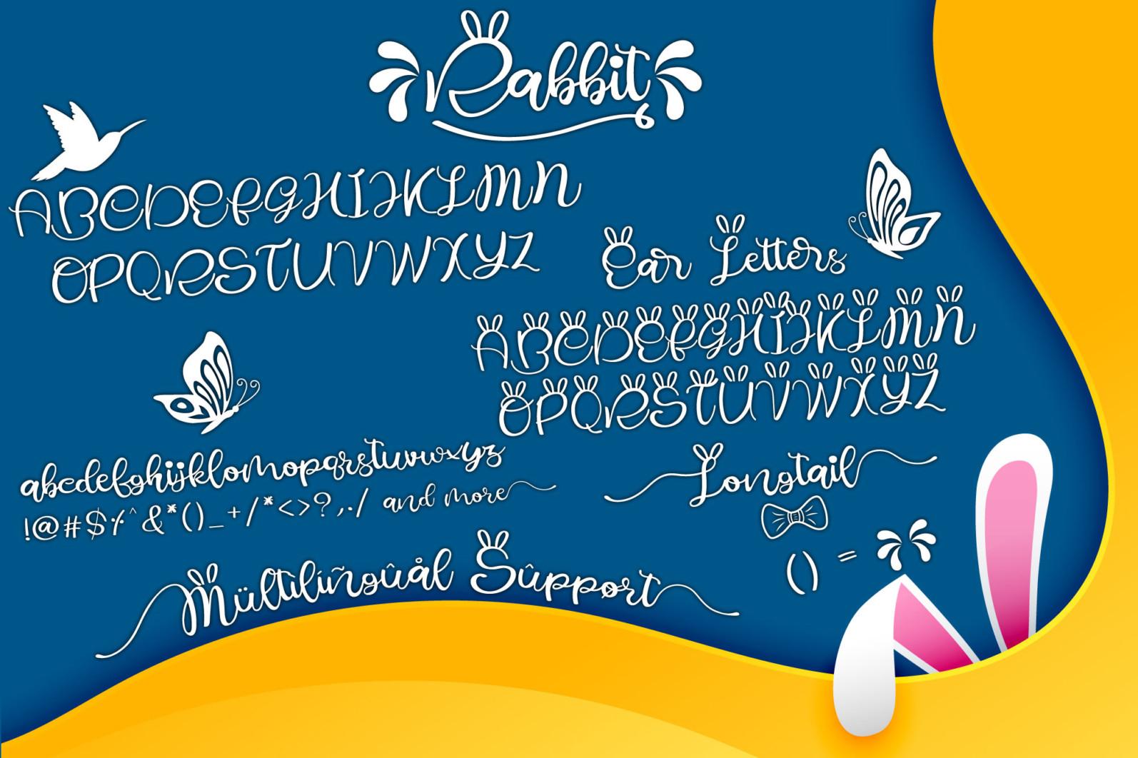Rabbit - Rabbit display6 -