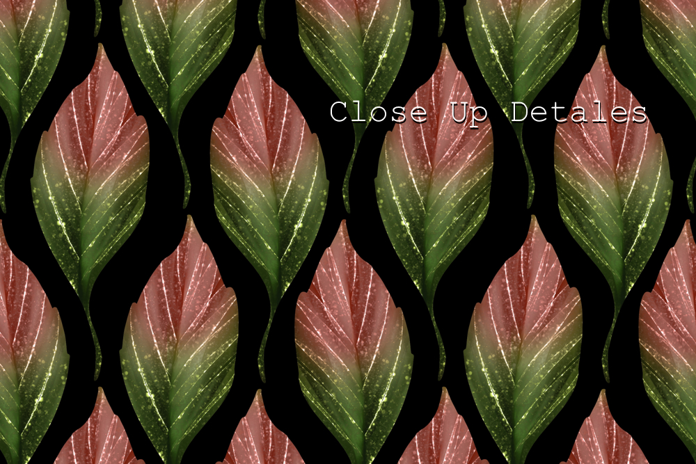 Chestnut leaves. 3 seamless patterns - Leaves. Seamless patterns 1 B02 -