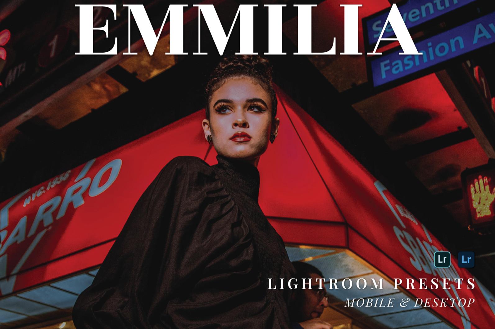 10 Emmilia Lightroom Mobile and Desktop Presets | Works with Free Lightroom Mobile App - 1 113 -