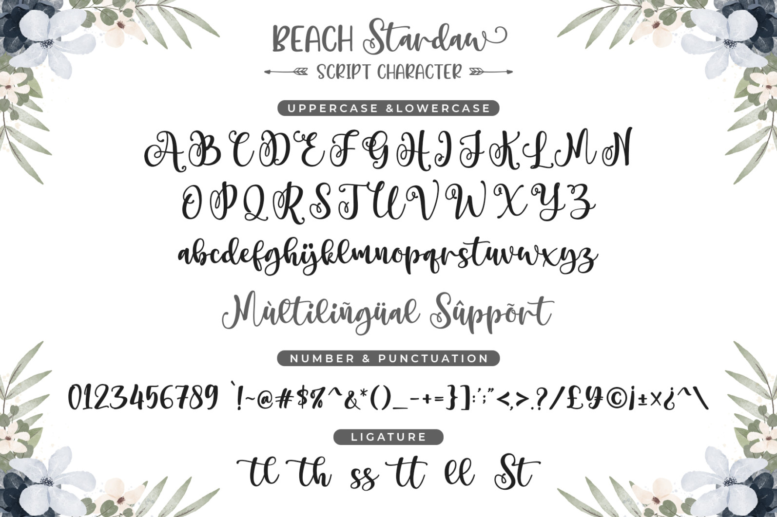 Beach Stardaw - Font Duo With Extras - 09 Preview -
