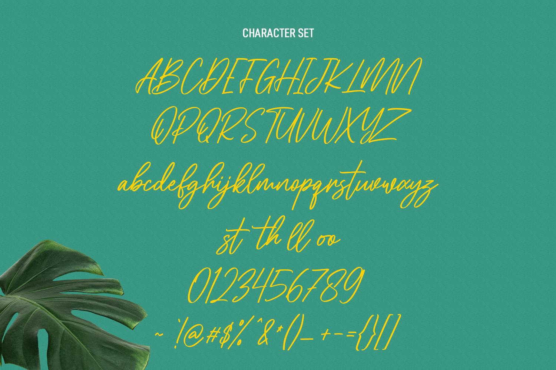 Cellarets Signature Script Font - Cellarets Signature Script Font 8 -