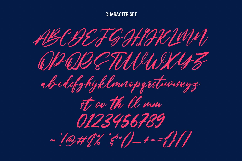 Nastyflashy Brush Script Font - Nastyflashy Preview8 -
