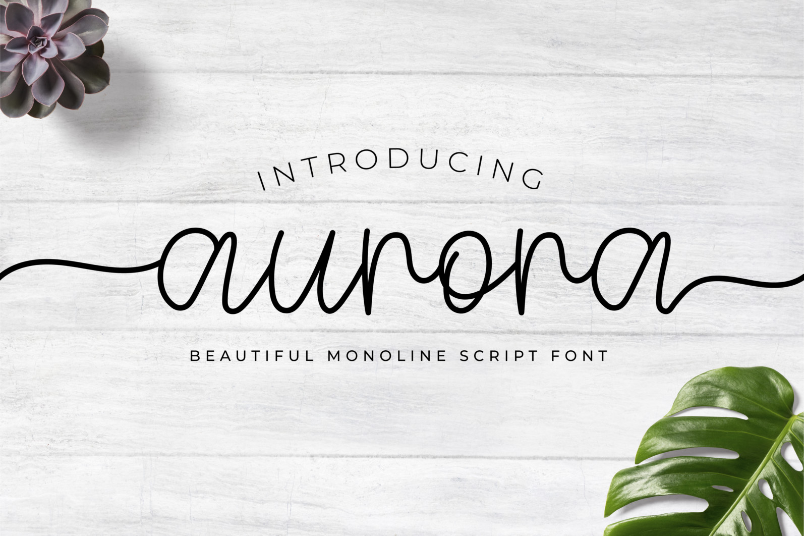 Aurora — Beautiful Monoline Script Font - Artboard 1 2 scaled -